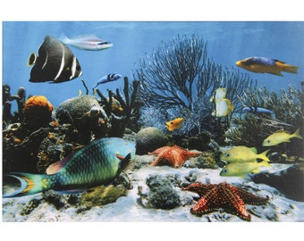 Sea Fish Beauty Fine Print Wall Sticker Poster Wihtout Frame (24 X 48 Inches)
