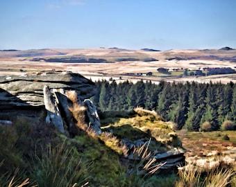 Dartmoor near Bellever Tor
