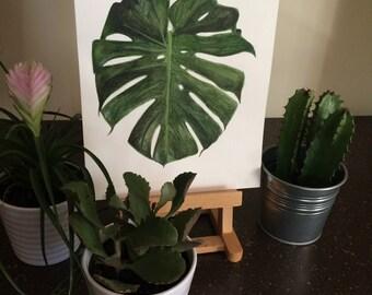 Monstera Deliciosa Single Leaf Watercolour Print