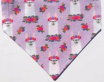 """Over the collar (slide on)  Pet Bandana -  Size MED/LARGE -  """"Llama Melodrama"""" bandana"""