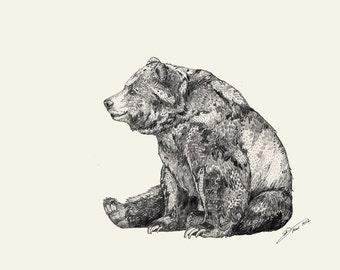 Bear  // Signed A4 print