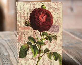 Botanical Note Card No. 03