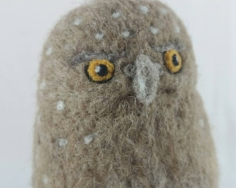 Northern Pygmy-Owl  100% sheep wool needle felted fiber sculpture.