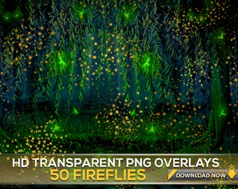 50 TRANSPARENT PNG FIREFLY Overlays, Fireflies Photoshop Overlays, Firefly Light Overlays, Digital Background, Digital Backdrop