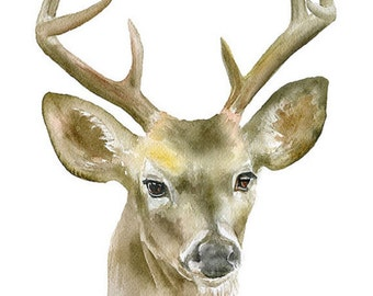 Buck Watercolor Print 24x36 Large Fine Art Poster - Deer Antlers Painting