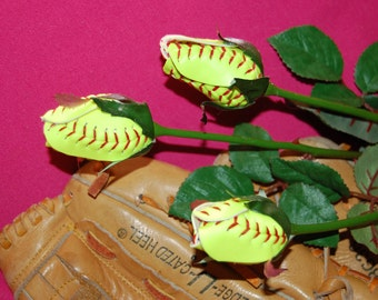Softball Sport Buds Roses
