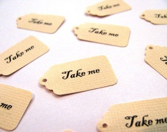 Mini TAKE ME tags- Alice in Wonderland inspired tags- 48 COUNT