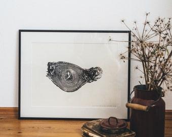 Woodprint Esche #1 / Ash #1