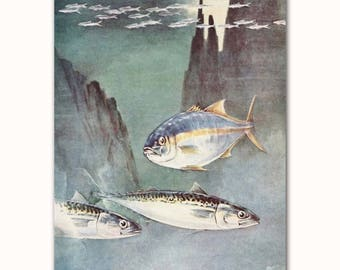Yellowtail Art, Mackerel Print, Vintage Fish Wall Decor, 1930s Beach House Artwork No. 225