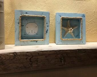 Rustic Starfish & Sand Dollar Shadow Box