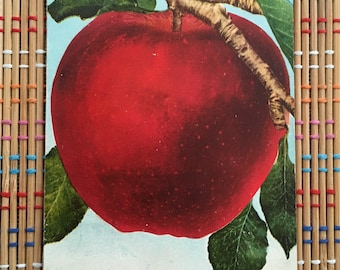 The Big Red Apple:  Delicious Vintage Postcard, 1910