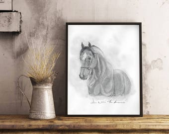 The Romeo Horse Sketch | Original Art Prints | Hand Drawn | Animal Art | Wall Art | Horse Decor