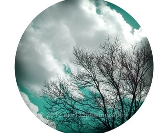 Aqua Blue Wall Decor Tree Photograph Nature Sky and Clouds Picture Round Image on an 8x10 inch Fine Art Photography Print Listening