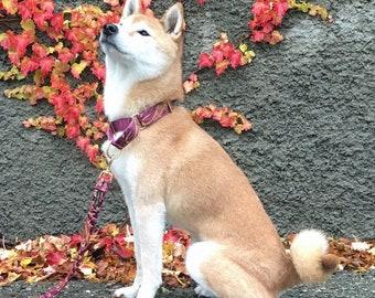 Paisley Martingale, Boy Dog Collar, Whippet Collar, Greyhound Collar, Martingale Collar, Custom Dog Collars, Shiba Inu Collar