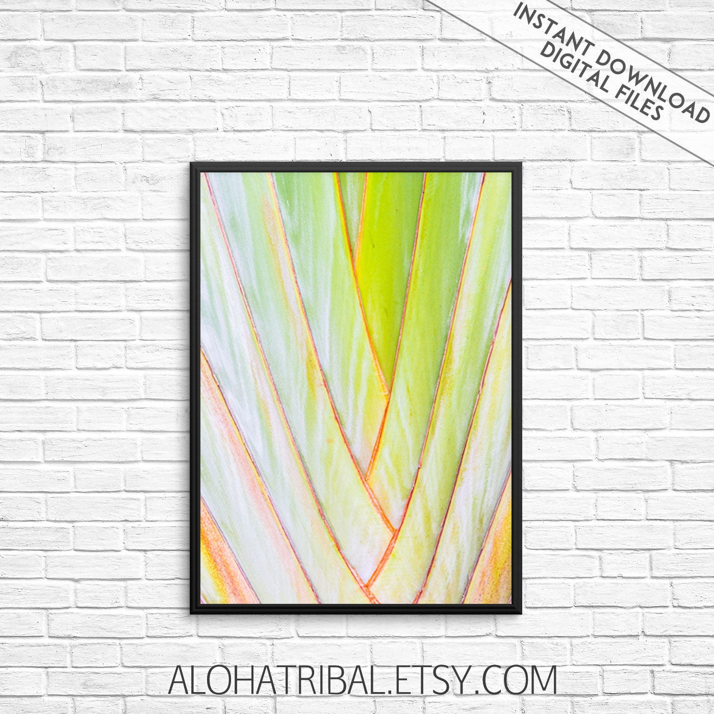 Leaf Print Tropical Leaves Palm Leaf Leaves Wall Art