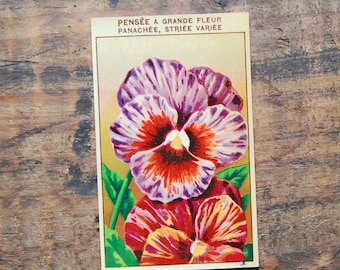 Original Vintage Flower Seed Label, Lithograph, French, Pansies, New Old Stock