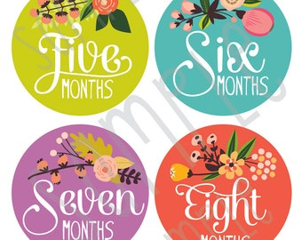 Monthly Baby Stickers, Baby Girl Monthly Stickers - Floral Hand Lettering Months 1-12 by Lucy Darling