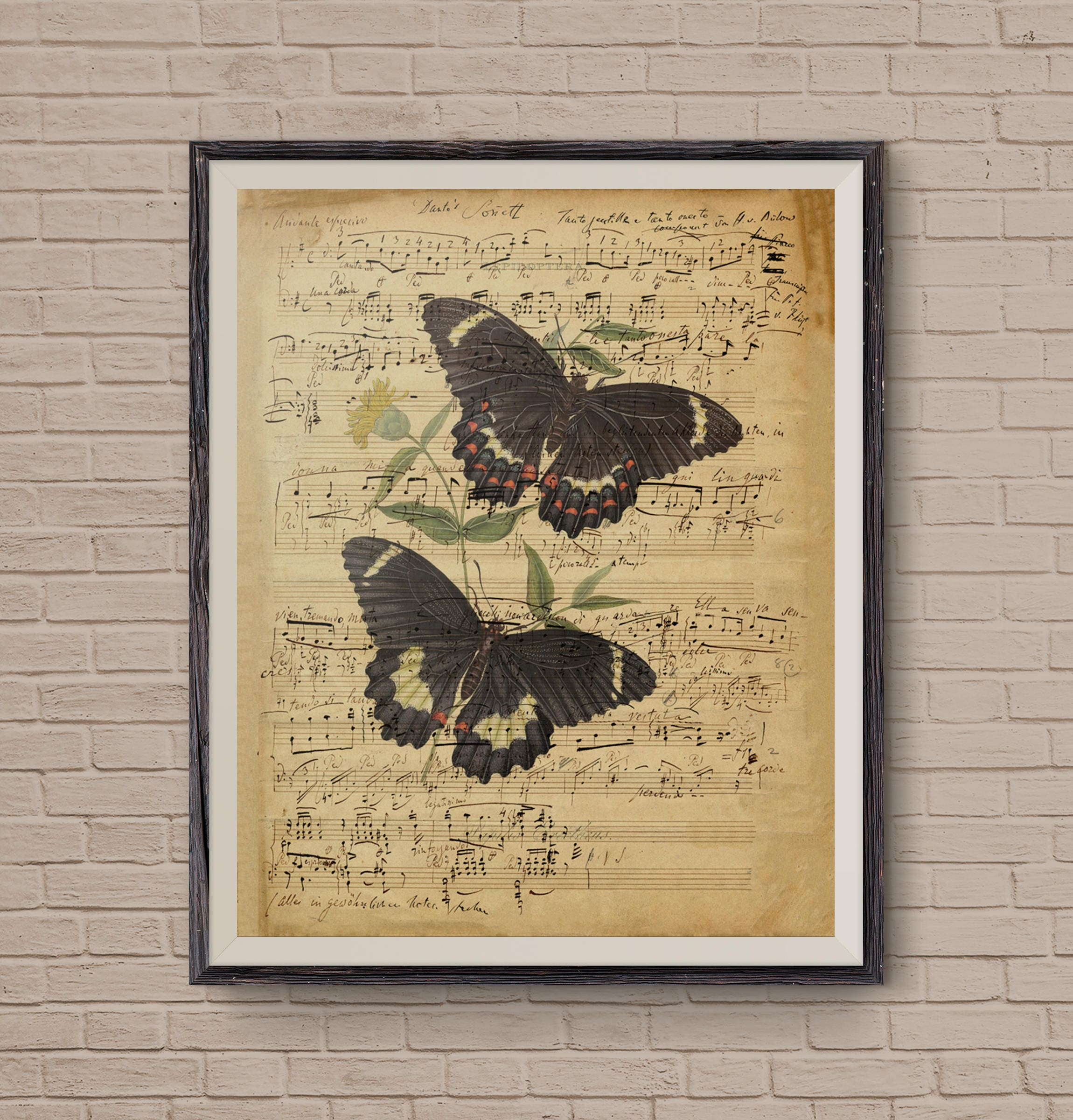 Vintage Music Sheet Music Sheets Butterfly Art Musical