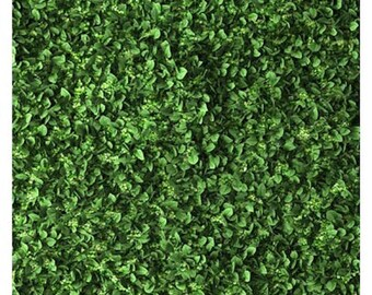 Spring Lawn Leaf Tree Grass Photography Studio Backdrop Background