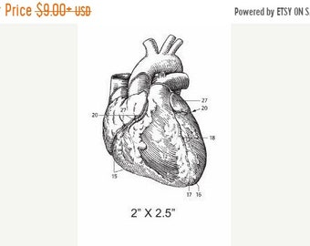 May Sale Anatomical Heart  Illustration Rubber Stamp