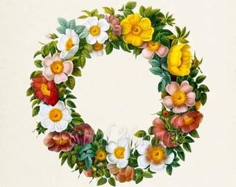 Rose Garland Flower Art Print, Botanical Art Print, Flower Wall Art, Flower Print, Home Decor, red, green, white, pink, yellow
