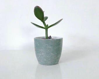 Mini marble effect pot and cactus // Succulent // Planter // Desk accessory // Storage