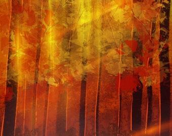 Autumn Glow -3