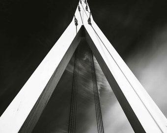 Fin -  fine art monochrome photography