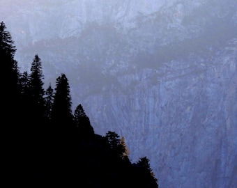 Yosemite Wilderness by Catherine Roché, California Landscape Photography, Sierra Nevada Mountains, Pine Tree Forest Photography, Fine Art
