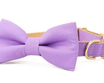 Crew LaLa™ Wisteria Purple Bow Tie Dog Collar