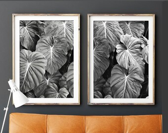 Tropical Print, Set Of 2 Prints,Black and White Photography,Print,Botanical Print,Wall Art,Posters,Prints,Leaf Print,Designer Art,Wall Decor