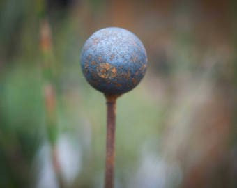 Sphere Plant Support lg