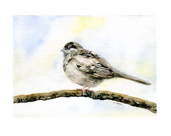 Original Watercolor Painting of a Song Bird 5 x 7