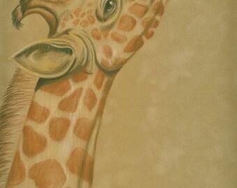 Giraffe print 9x12