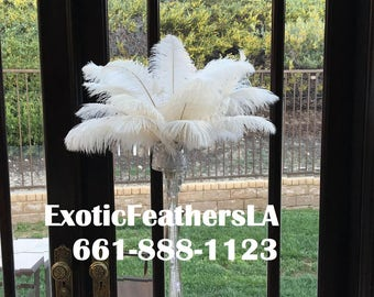 USA Store White Ostrich Feathers 10 to 14 inch, Choose 1 to 100 Pcs. Ostrich Feather Plumes,Feather Centerpieces,Samba Costumes,Mardi Gras