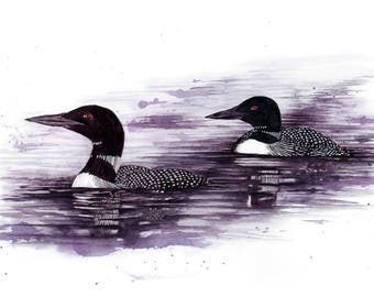Wine Painting: Common Loon - reproduction of original