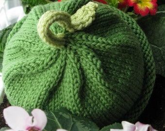 Baby Hat Sprout