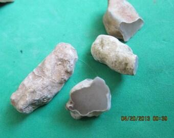 Four Agatized Petrified Wood Limb Cast Limbcast White Beige Natural Free Form Stones 31
