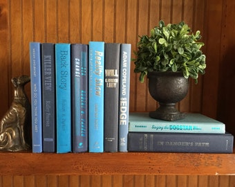 Blue Decorative Book Lot With Silver Lettering | Vintage Modern | Instant  Library | Home Office Decor | Staging | Farmhouse | Blue Book Set