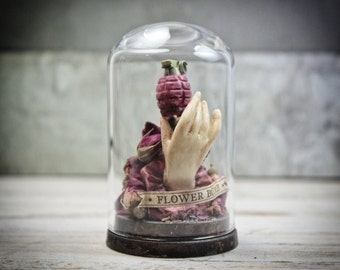 Oddities Miniature Hand with Roses Grenade in GLASS Dome Bell Jar Home Decor Curiosity Cabinet Wunderkammer