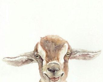 Baby Goat - Print