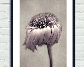 Vertical art neutral flower photography, sepia print, modern artwork, floral art print 12x16, beige dusty pink bathroom wall decor taupe tan
