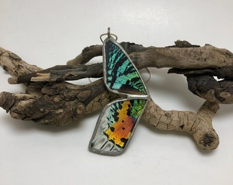 Real moth jewelry, butterfly jewelry, real butterfly jewelry, butterfly, real moth wing Necklace, moth pendant, sunset moth Pendant
