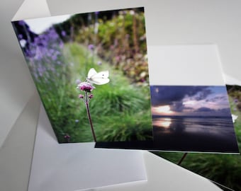 A5 Butterfly Photograph Greeting Card