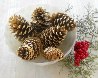 Assorted Gold Pine Cones  Set of 6, Wedding Decor Inspired, Christmas Decor, Ornaments, Props, Farmhouse Decor,  Craft Supplies Projects