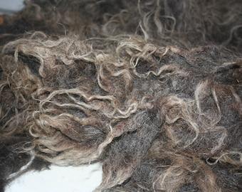 Racka raw wool 1.9kg/4.18lb