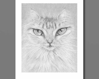 Maine Coon Cat Print, Maine Coon cat art, Mainecoon drawing, Maine Coon art, cat print, cat art, big eye cat art, pop surrealism cat, kitty