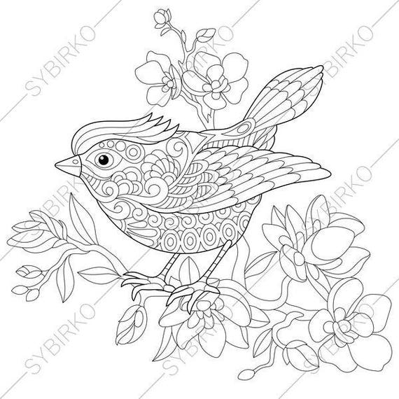 spring bird coloring page animal coloring book pages for. Black Bedroom Furniture Sets. Home Design Ideas