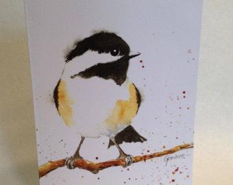 cheery, sassy, black capped chickadee