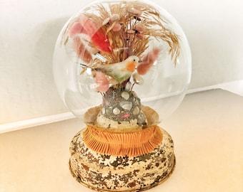 The Nest Builder (Bird Terrarium Assemblage)